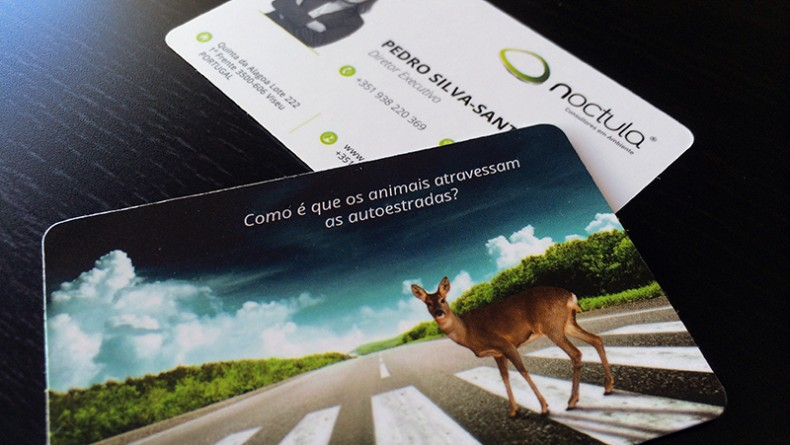 00-contacts-pedro-silva-santos-noctula-business-card
