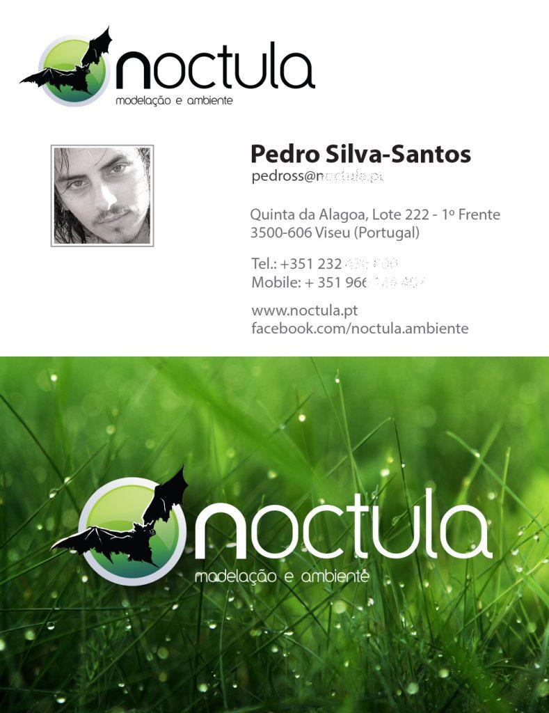 first-business-card-Pedro-Silva-Santos-NOCTULA